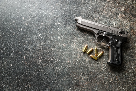 How Can I Use My Handgun for Hunting in TX in Texas, TX